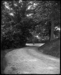 Dirt road from Alumni Hall to Eaton Hall
